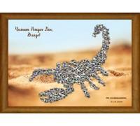 Колаж Зодия Скорпион, със снимки, различни размери и фонове