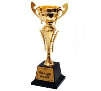 Златна купа за Най-мъдрия началник